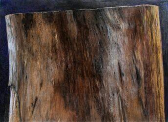 Bark: The new chopping block