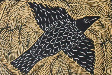 Balinese crow