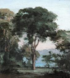 Morning, Nielson Park