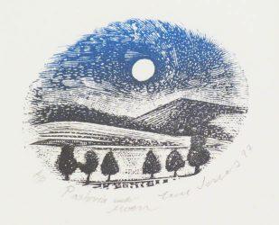 Pastoria under moon
