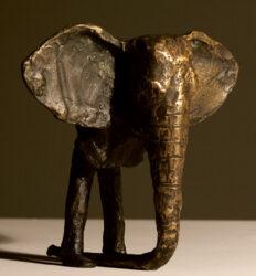 Elephant obscurer