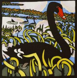 Black swan II
