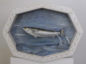 Leaping mullet