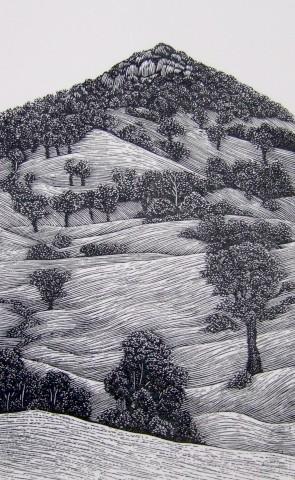 Tilba hill