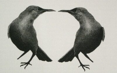 Two birds, no stone
