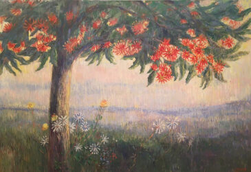 Summer dawn, firewheel tree