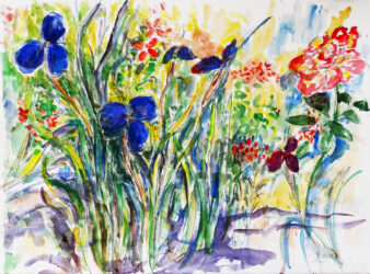 Native irises and roses