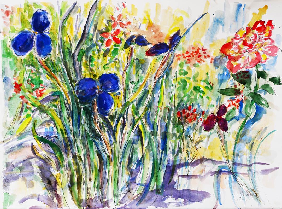 Native irises and roses