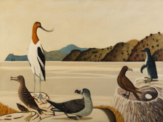 Study for, Colonial seabirds