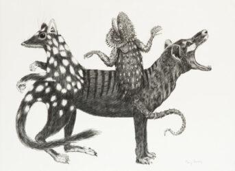 Australian chimera #3