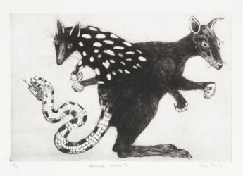 Australian chimera #4