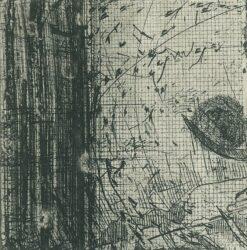 Elsewhere world fragment No. 87
