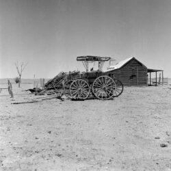 Untitled (cart in landscape)