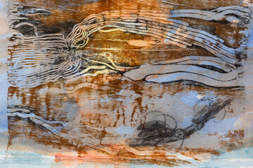 Seeing Nature: Sarah Ormonde & John Wolseley