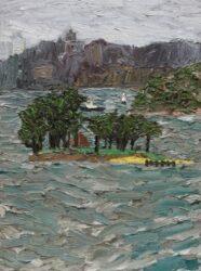 Overcast, Shark Island
