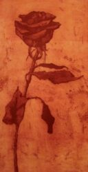 Small rose I