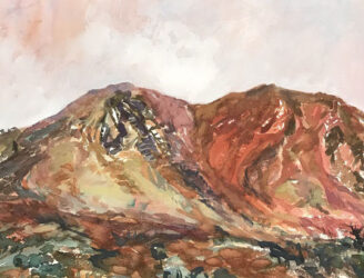 Study from Fowlers Gap #3