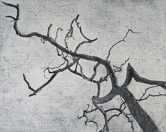 Picked – Bimblebox branches 5