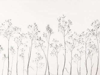 Grass VIII