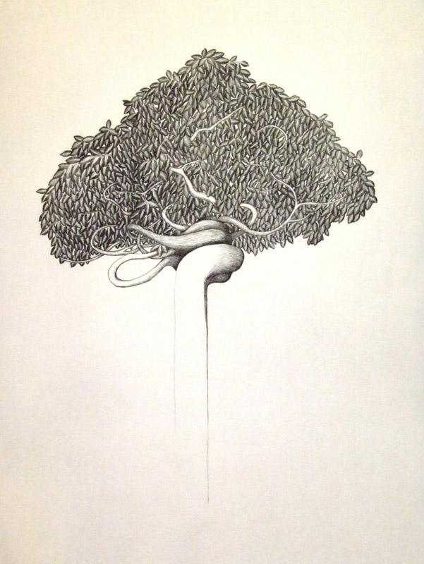 Persian tree