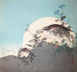 TSUKIOKA KŌGYO (1869 – 1927) – Two quails on a rock as the moon  ascends behind them c.