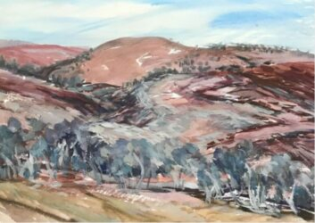 Study from Fowlers Gap #4