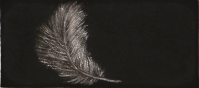 Feather #54