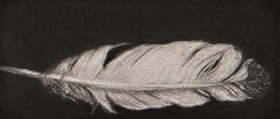 Feather #57