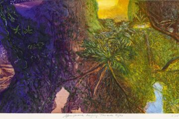 William Robinson 'Nature Imagined' at QUT Gallery