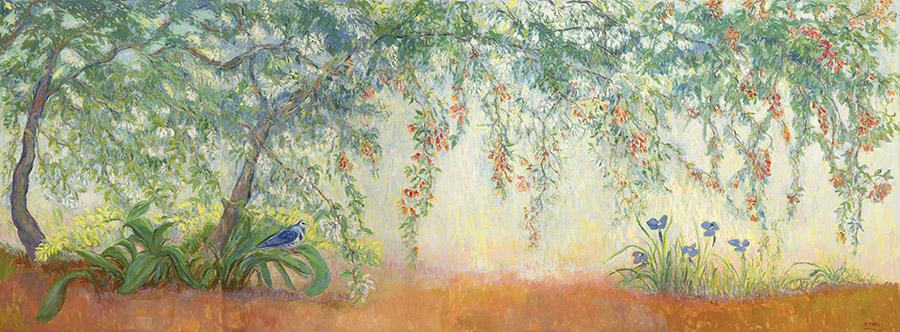 Joy of spring, wonga wonga vine with  wonga pigeon and native irises