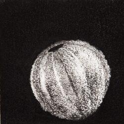 Urchin #10