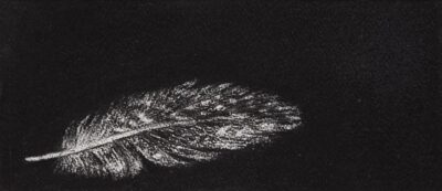 Feather #9