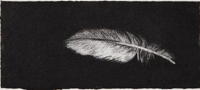 Feather #15