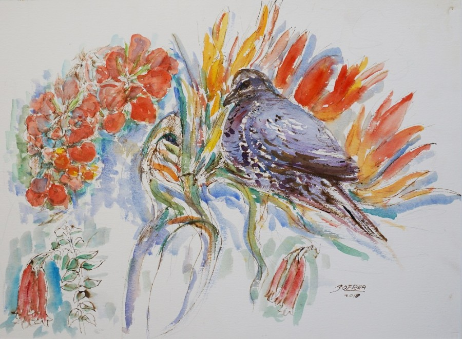Nestling bower bird