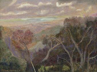 Early golden light, Springbrook