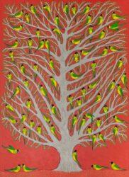 Port Lincoln parrots – dusk