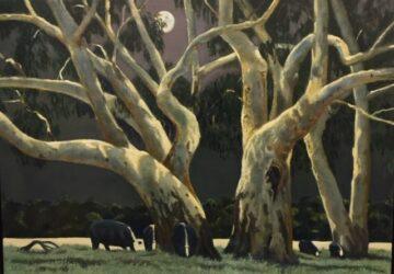 Cattle under moonlight