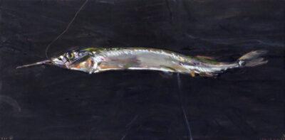 Garfish V