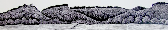 Shoalhaven landscape