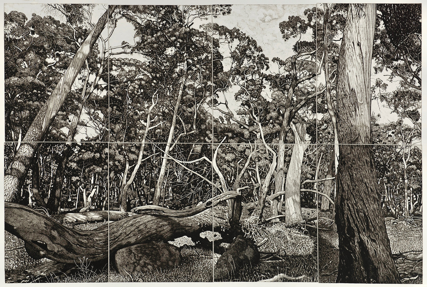 The Tangled Wood (composition 1) 2018 etching 80x120cm