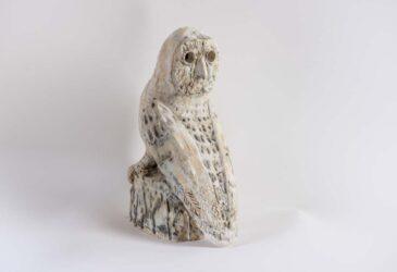 White owl #2