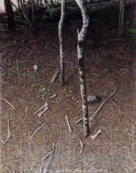 Saplings with wallaby bones