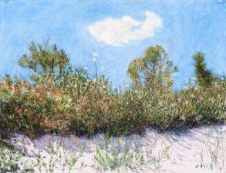 Straddie landscape no. 13