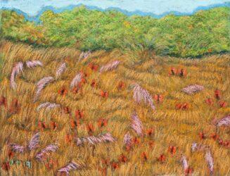 Straddie landscape no. 14