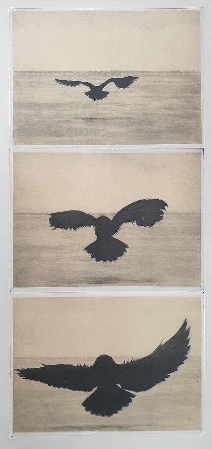 Three frames from melencolia