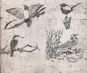 Study for false ornithology