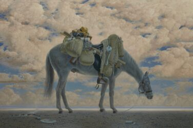 Equine Impedimenta – Tully's Baggage (late afternoon)