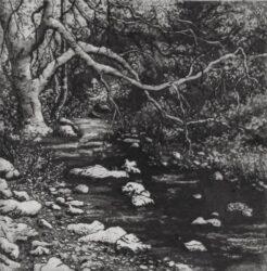 Trucker's brook