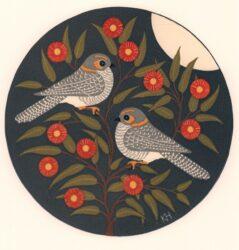 Owlet nightjar & eucalyptus