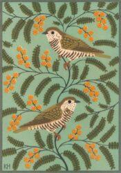 Bronze cuckoos